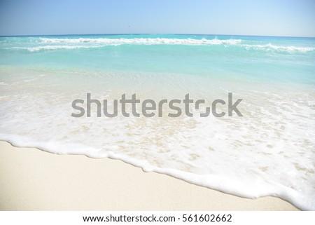 Beach #561602662