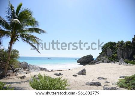 Beach #561602779