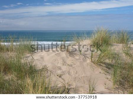 Beach Access, New Zealand
