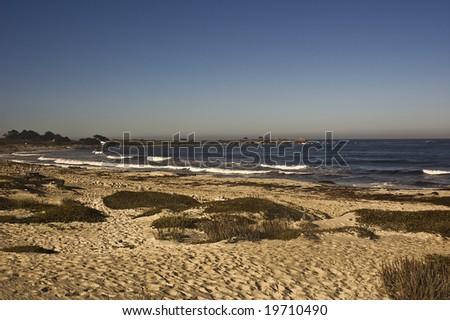 Beach along 17 Mile Drive (Pebble Beach) near Monterey, California.