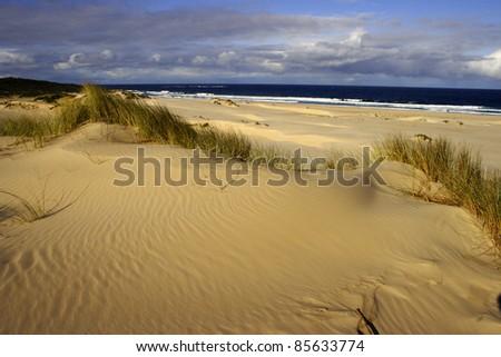 Beach and sand dunes at St. Helen's point in Tasmania Australia
