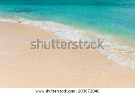 beach and sea nature background #203872048