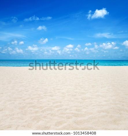 beach and tropical sea #1013458408