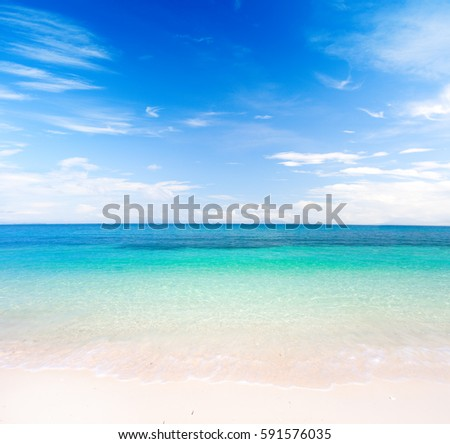 beach and tropical sea #591576035