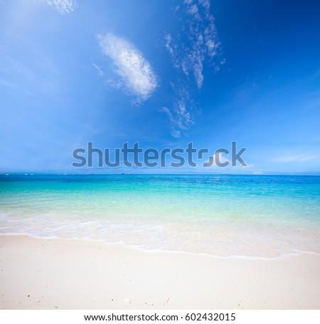 beach and tropical sea #602432015
