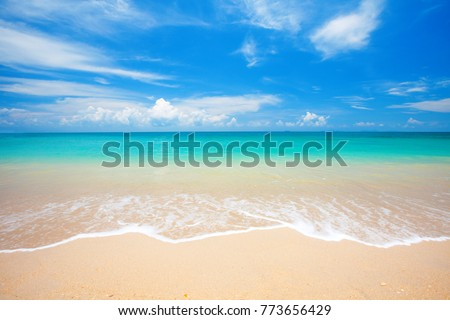 beach and tropical sea #773656429