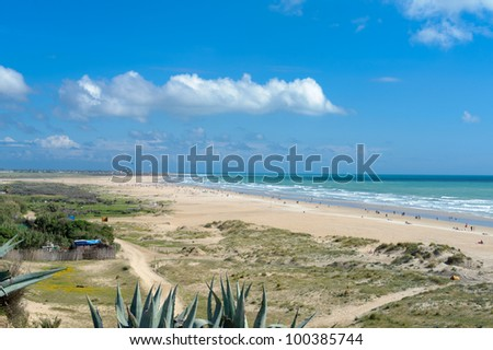 beach at Conil Andalusia in Spain