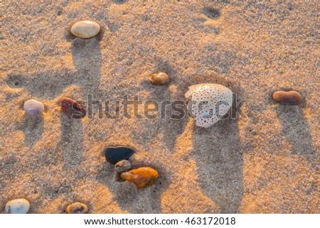 Beach at sunrise on Long Island, US #463172018