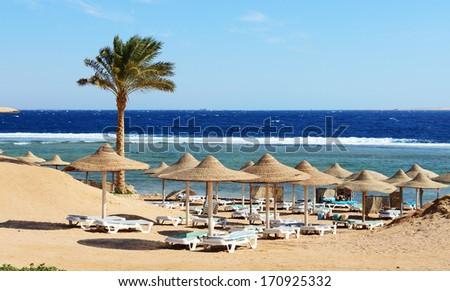 Beach at the luxury hotel, Sharm el Sheikh, Egypt #170925332