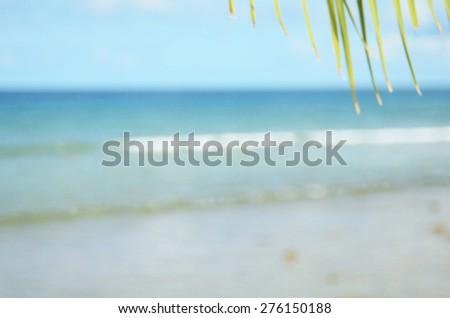 Beach background.Blurred palm leaf on beach vintage effect.