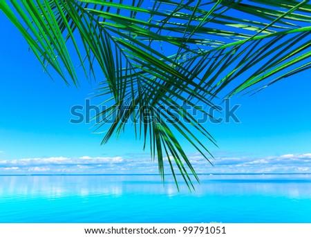 Beach Background Sea