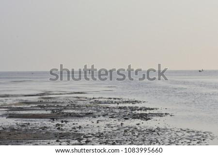 Beach backwater mud, mud background, mud backdrops #1083995660