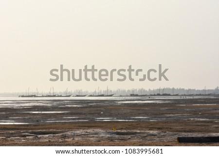 Beach backwater mud, mud background, mud backdrops #1083995681