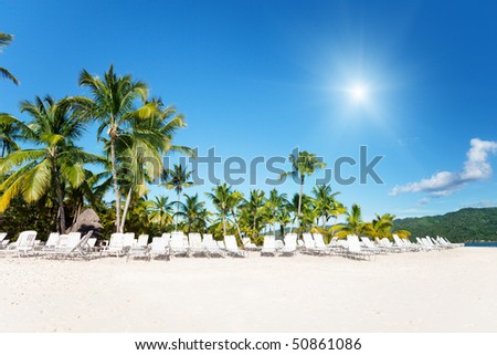 beach chairs on perfect tropical white sand and palms