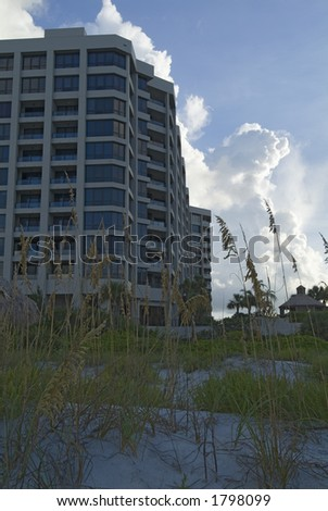 Beach condo with native landscape on beach
