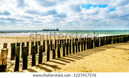Beach erosion protection with a Large Ocean Freighter coming from the North Sea in the backgroun and heading into in the Westerschelde to the harbor of Vlissingen in Zeeland Province, the Netherlands