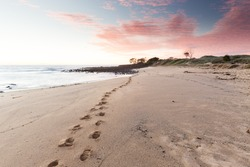 Beach Footprints Leading into a Pink Sunrise