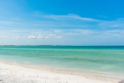 Beach front Tampa area florida