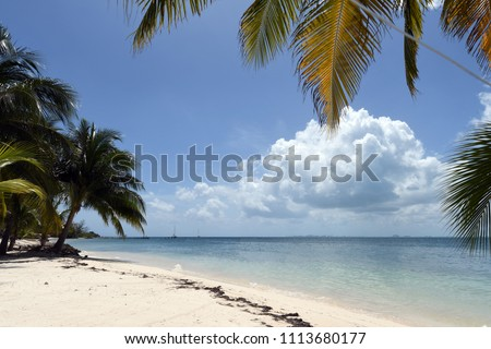 beach front view #1113680177