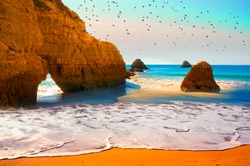 beach in  Portimao is a favorite vacation spot for the Portuguese and visiting Europeans. Clean sand, warm sea and beautiful cliffs on the coast attract tourists. A flock of seagulls over a rock.