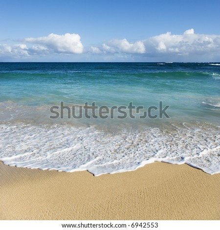 Beach landscape on Maui, Hawaii.