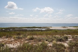 Beach landscapes Portugal: The lagoon Ria de Aveiro, an untouched coastal marshland and a haven for numerous bird species, renowned for artisan fishing and the collection of fleur de sel