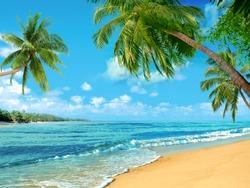 Beach oceanfront