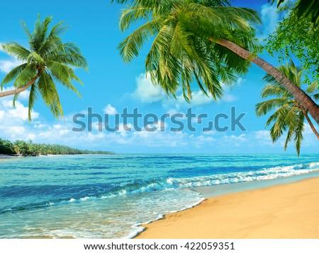 Beach oceanfront #422059351