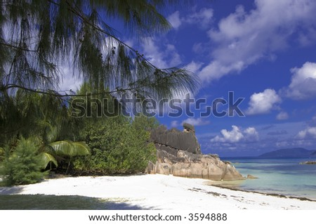 Beach of Cousine island  located two miles from Praslin, Seychelles