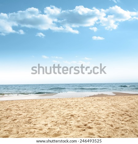 beach of sand and sea