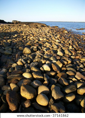 Beach of stones along Penobscot Bay, Lincolnville, ME.