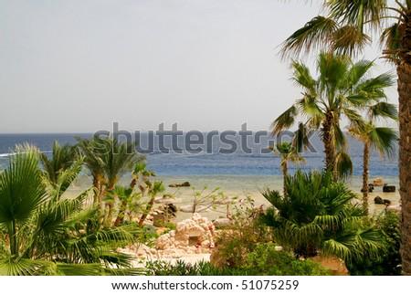 Beach on Red sea, Egypt.