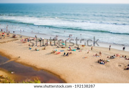 Beach on the Indian Ocean. India (tilt shift lens). - stock photo