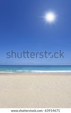 beach on the sunny day
