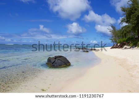 Beach on tropical island. Clear blue water, white sand and palm trees. Beautiful vacation destination.