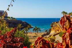 Beach Playa Paraiso costa Adeje in Tenerife at Canary Islands