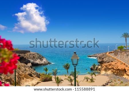 Beach Playa Paraiso costa Adeje in Tenerife at Canary Islands