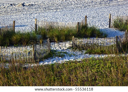 Beach sand sea grass and fences landscape stock photo for Seagrass for landscaping