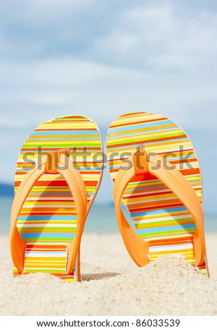 Beach sandal on the sandy coast