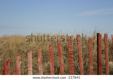 Beach scene, fence and seagrass.