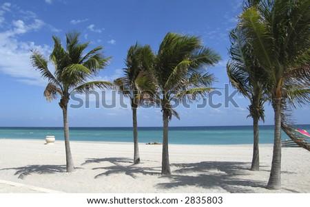 Beach Scene Hollywood, Florida