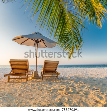 Beach scene with loungers in a tropical landscape, relaxing palm trees and blue sea #753270391