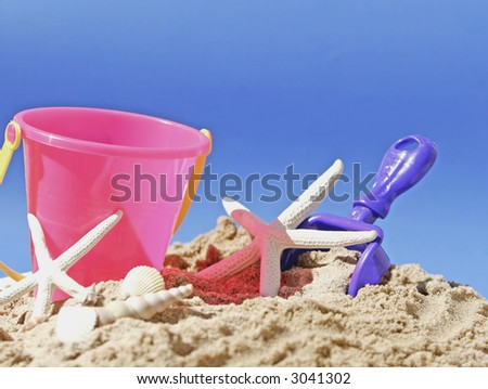 beach scene with sand and shells