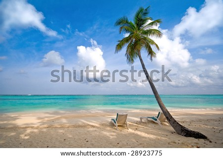 beach, sea and coconut palm tree with deck chair (more tropical beaches in my portfolio)