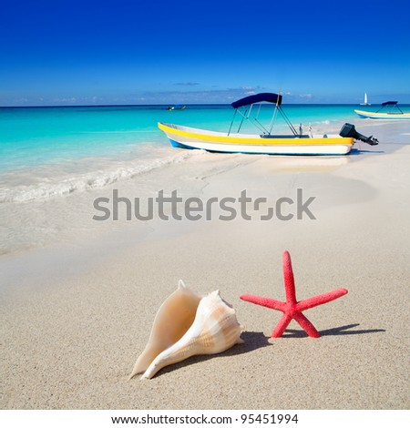 beach starfish and seashell with tropical boat in turquoise sea [photo illustration]