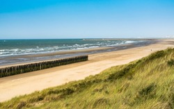 Beach, summer and paysage concept: view of the beach, vegetation on the dunes and wooden breakwater on the north sea.Oye-Plage in France.