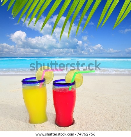 beach tropical cocktails palm tree leaf turquoise beach on Caribbean Sea [Photo Illustration]
