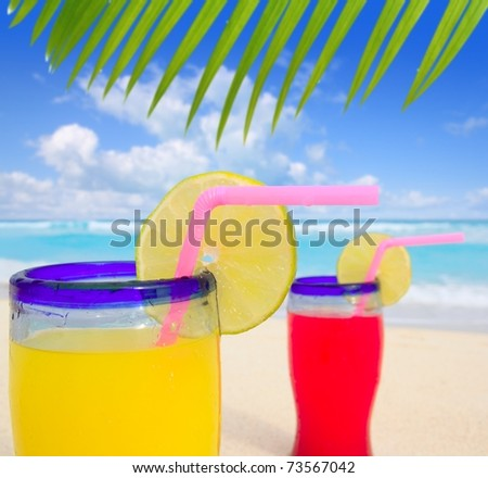 beach tropical cocktails palm tree leafl turquoise beach on Caribbean Sea [Photo Illustration]