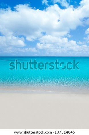 beach tropical with white sand and turquoise water under blue sky