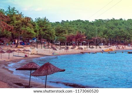 Beach umbrella on the beach #1173060520